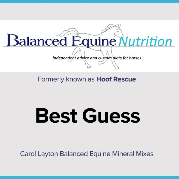 Carol Layton Balanced Equine Mineral Mixes Best Guess