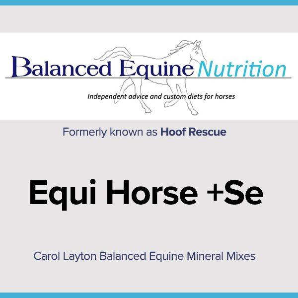 Carol Layton Balanced Equine Mineral Mixes Equi Horse +Se